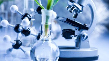 Химический, микробиологический анализы воды из скважин, и центрального водоснабжения, с примером допустимых показателей